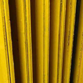 More than yellow by Rita Adams