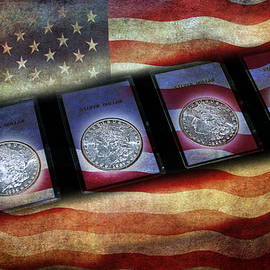 Morgan Silver Dollar by Gunter Nezhoda