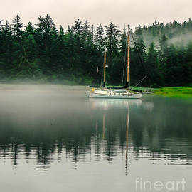 Morning Fog by Robert Bales