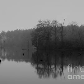 Morning Reflections by Kimberly Saulsberry