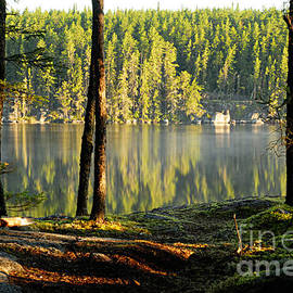 Morning Reflections On Paull Lake by Larry Ricker