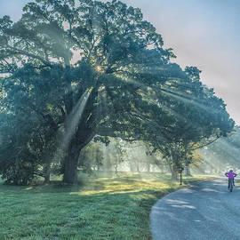 Morning Ride Through the Arboretum