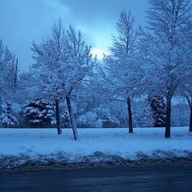 Robbin Shroeder - Morning snow