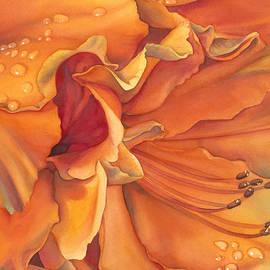 Sandy Haight - Morning Splendor