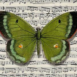 Moth 8 by Robert Todd
