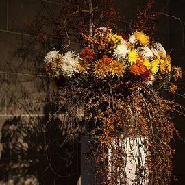 Mother Nature's Vivid Autumn Colors - a Still Life by Georgia Mizuleva