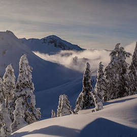 Mike Reid - Mount Baker Snowscape