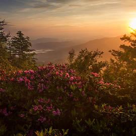 Mountain Morning by Doug McPherson