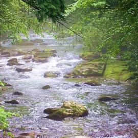 Mountain Stream by Chuck  Hicks