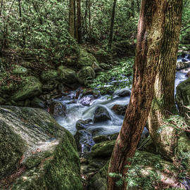 Mountain Streaming by Harry B Brown