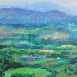Mountains and Valleys- Summertime along the Blue Ridge Parkway by Bonnie Mason