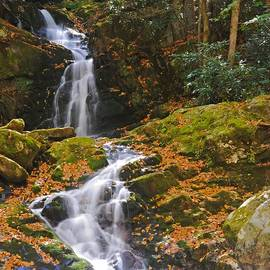 Mouse Creek Falls - North Carolina Waterfalls Series by Matt Plyler
