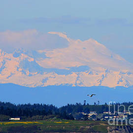 Mt. Baker of Pacific Northwest by Tap On Photo