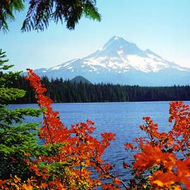 Debra Orlean - Mt. Hood at Lost Lake in Autumn