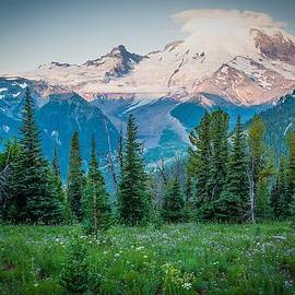 Spencer McDonald - Mt. Rainier - Wild Flowers