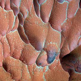 Britt Runyon - Muav Mosaic