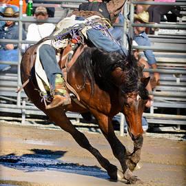 Mud Riders by Gary Keesler