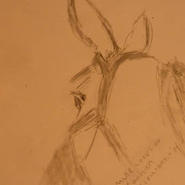 Carolina Liechtenstein - Mule Looks On