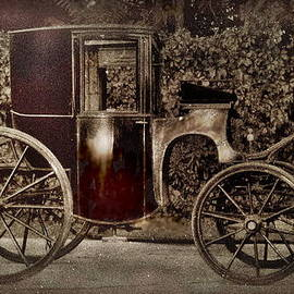 Murdoch Mysteries Carriage by Danielle  Parent