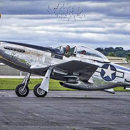 Mustang P51 by Steven Ralser