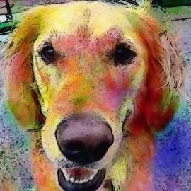 My Friends Dog #portrait #dogportrait