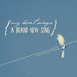 My Heart Sings A Brand New Song || Shot