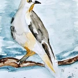Marsha Heiken - My Painted Bird