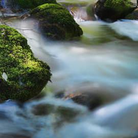 Allan Van Gasbeck - Mystic Mill Creek and Sunlight