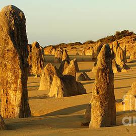 Bob Christopher - Nambung Desert Australia 2