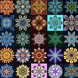 Nature's Mandala Page 02 by Derek Gedney