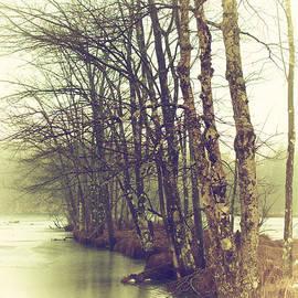 Karol Livote - Natures Winter Slumber