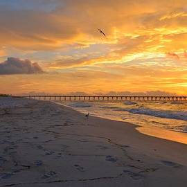 Navarre Pier and Navarre Beach Skyline at Sunrise with Gulls by Jeff at JSJ Photography