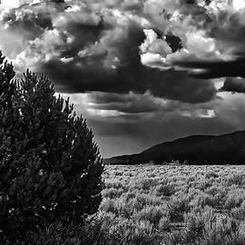 Needed Rain III by Charles Muhle
