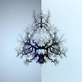 Jerod  Kytah - Neural Circuitree V.1