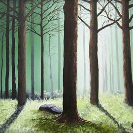 Martin Schmidt - Never Land Forest