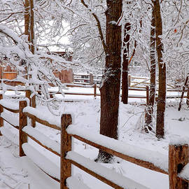 New England Winter by Dianne Cowen Photography