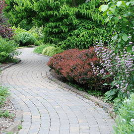 Richard Bryce and Family - Frelinghuysen Arboretum Path