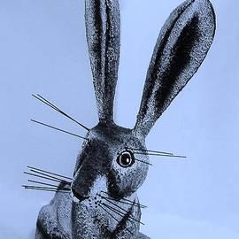 New Mexico Rabbit Cyan by Rob Hans