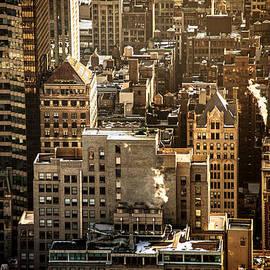 Vivienne Gucwa - New York Cityscape