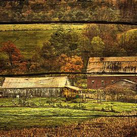 Priscilla Burgers - New York State Barn on Barn Wood