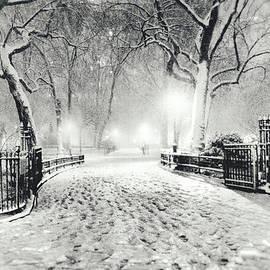 Vivienne Gucwa - New York Winter Landscape - Madison Square Park Snow