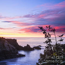 New Zealand Marlborough Sunrise by Colin and Linda McKie