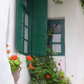 Maxine Kamin - Naxos Green Shutters