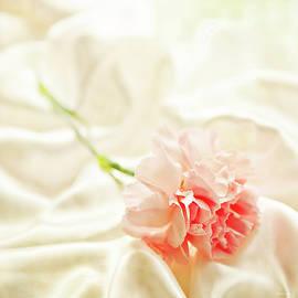 Theresa Tahara - Nights In White Satin