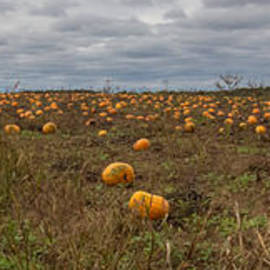 Stormy Pumpkin Field by Patti Deters