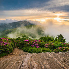 Dave Allen - North Carolina Appalachian Trail Spring Blue Ridge Mountains
