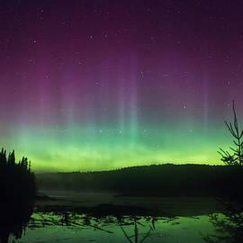 Northern Lights Algonquin by Steve Dunsford