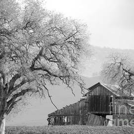 Not Much TIme Left BW by Debby Pueschel