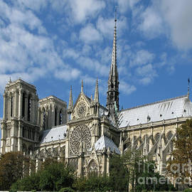 Ann Horn - Notre Dame Cathedral