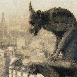 Douglas MooreZart - Notre Dame Cathedral Gargoyle